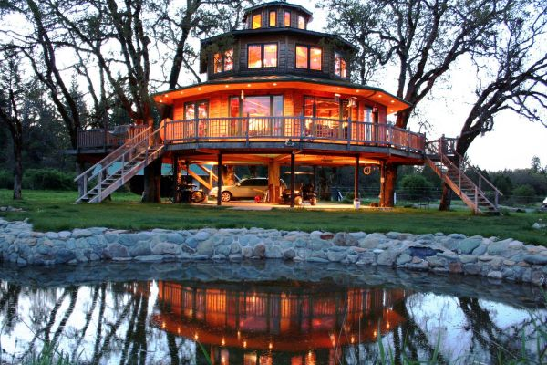 5-out-n-about-treehouses-treesortE389CEB1-9D5D-8F69-7003-D87EEEF83E89.jpg