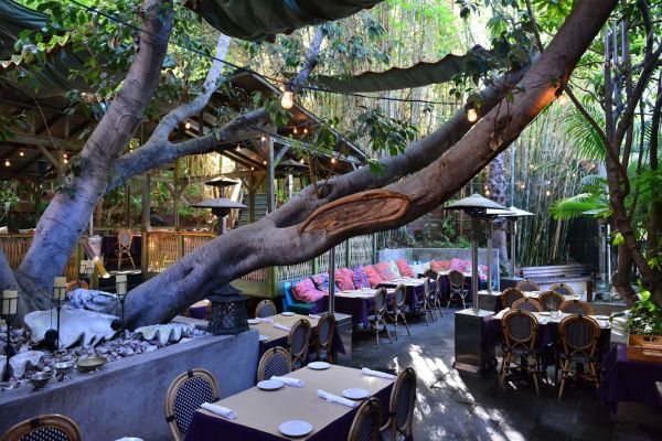 cliff-s-edge-is-an-enchanting-treehouse-restaurant-in208AB1CE-B19A-B0FD-031C-3B0F98C1C693.jpg