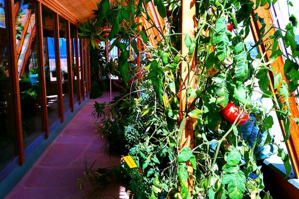 preppers-will-earthship-provides-you-with-a-reliable-food-sourceA7584E45-FDF4-84F2-D7E2-9B56EE9415BA.jpg